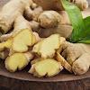 Ini Tanaman Herbal Kaya Manfaat yang Disukai Rasulullah