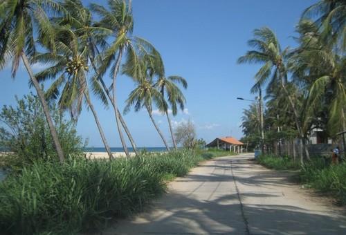 Xe hợp đồng Phú Yên - Đường ra bãi biển Long Thủy