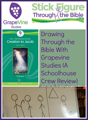 Drawing through the Scriptures with Grapevine Studies