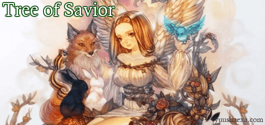 Tree of Savior IP block