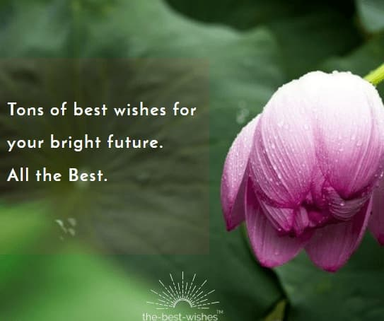 Wish You All The Best With Quote And Sayings
