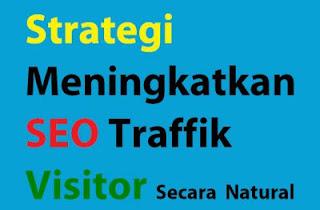 Strategi Meningkatkan SEO Traffic Visitor Secara Natural
