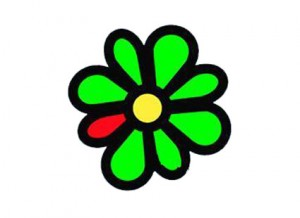 Download ICQ, excellent program to chat with your friends