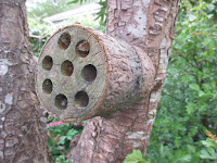 Simple bee hotel mafe from a log drilled with holes.