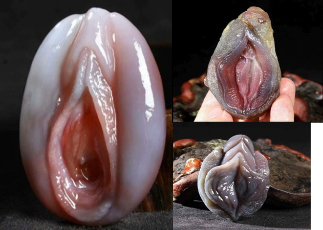 "PHOTOS: Adorable Photos Of A Fish Called ""Shellfish"" That Looks Exactly Like A Woman"
