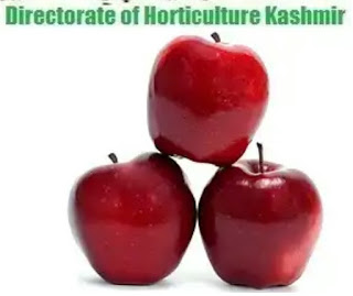 Jobs in Horticulture Department in Kashmir