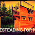 Homesteading: How to Live and Grow Off the Grid