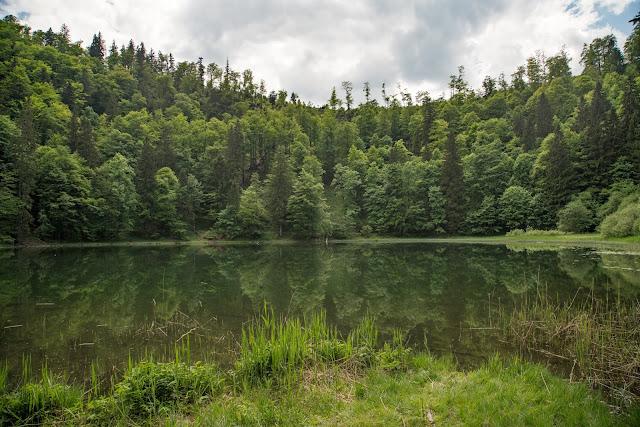 Von Hof bei Salzburg auf den Filbling  Wandern in der FuschlseeRegion 08