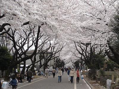 Tempat Wisata di Jepang yang Paling Populer Daftar 10 Tempat Wisata di Jepang yang Paling Populer