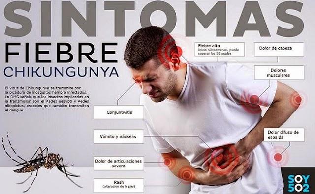 Mexico detecta su primer caso del virus Chikungunya