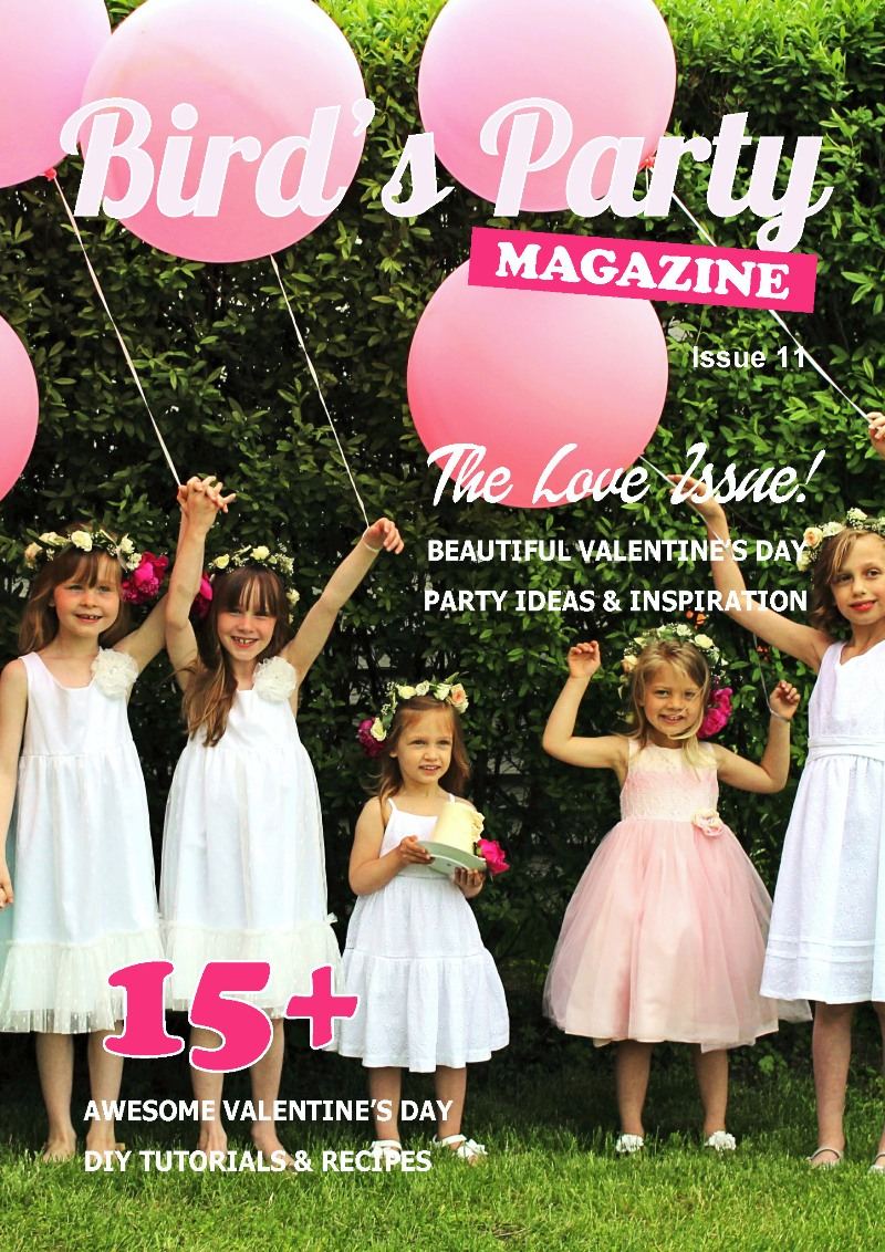 Bird's Party Ideas Magazine | The Love Issue Out Now - BirdsParty.com