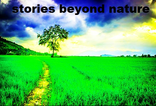 Story Beyond Nature