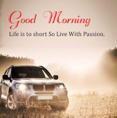 Most Beautiful Good Morning WhatsApp Images