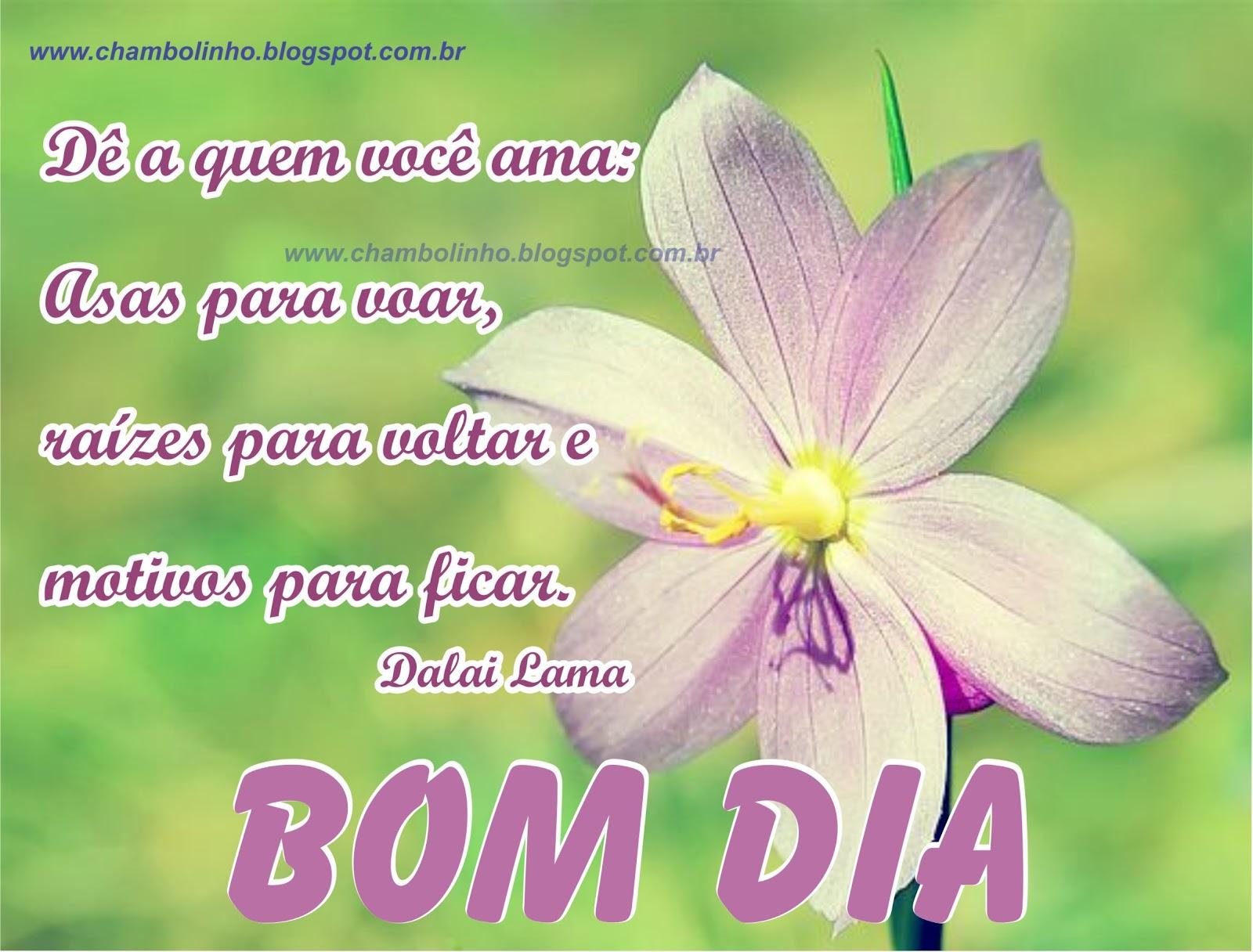 Imagens E Frases De Bom Dia Para Compartilhar No Facebook