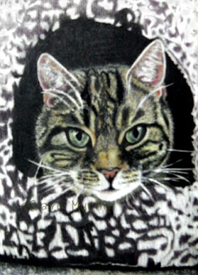 Pet portrait of a cat in pastels. Kent, Surrey, Sussex, London.