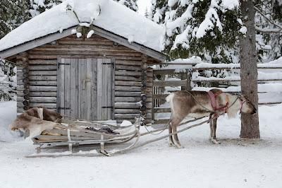 Reindeer sleigh