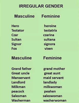 Irregular Gender