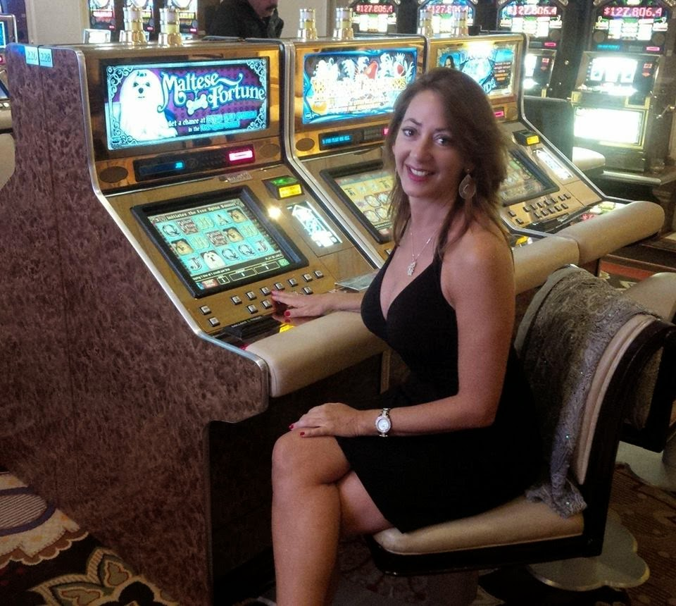 cat blogger slot machine Las Vegas