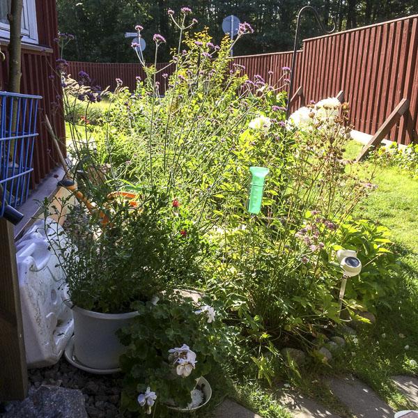 krukor, trädgård