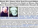 Şeyh Esseyyid Muhammed Raşid Erol (k.s.) Hz.Mehdi Hakkında