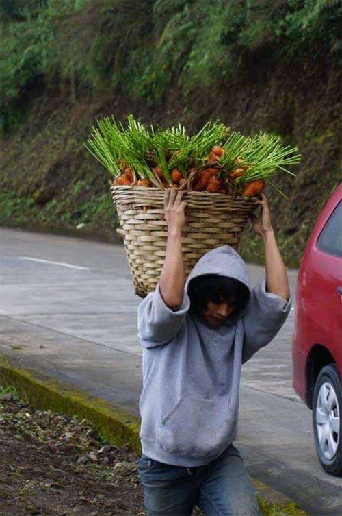 carrot man Jeyrick Sigmaton