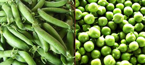 Cocinar legumbres de forma saludable recetas f ciles y for Cocinar guisantes frescos