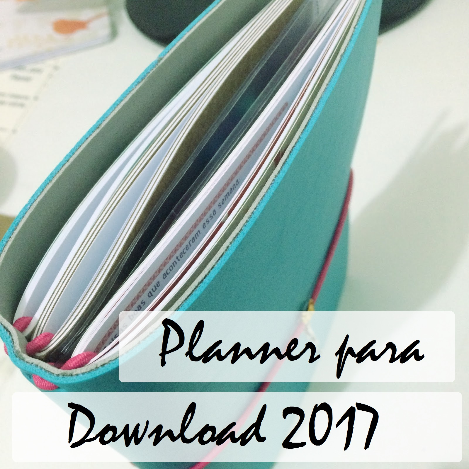 planner-para-dowloand-2017