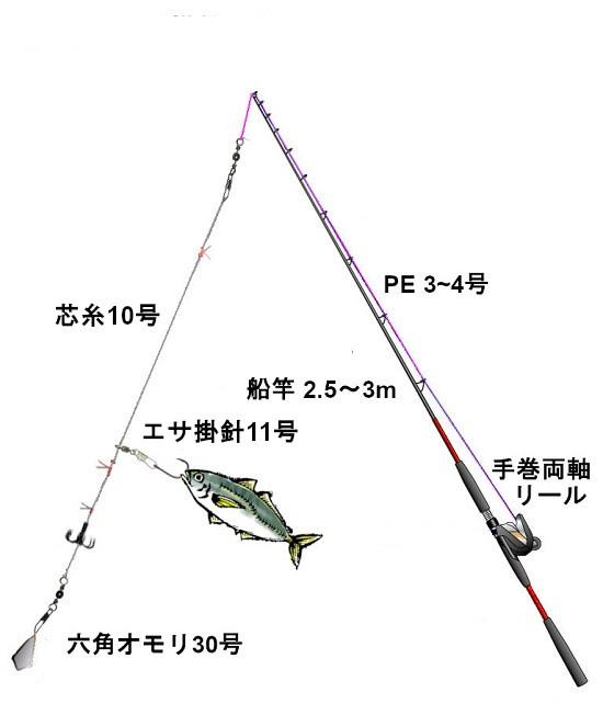 関西の船釣りで釣れる 竿とリール アオリイカ 仕掛け