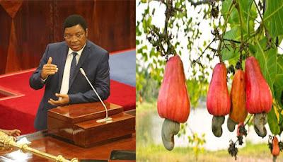 Waziri Mkuu Majaliwa Atoa Ufafanuzi 'sintofahamu' ya wakulima bei ya korosho