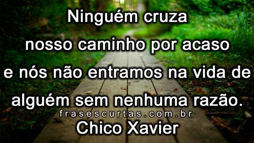 Frases Espíritas De Chico Xavier Frases Curtas