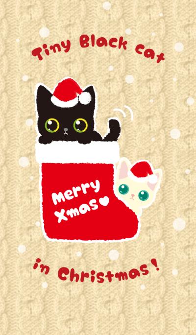 Tiny Black Cat in Christmas!