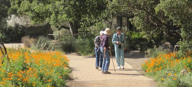 Informações sobre o Santa Bárbara Botanic Garden