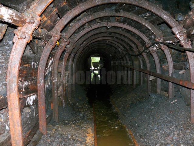 O mină de mangan de lângă Vatra Dornei cumpărată de o companie slovacă cu sub 1 milion de euro