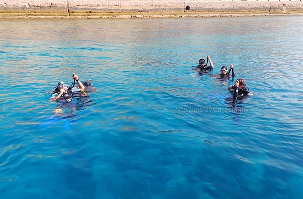 Diving in Aqaba
