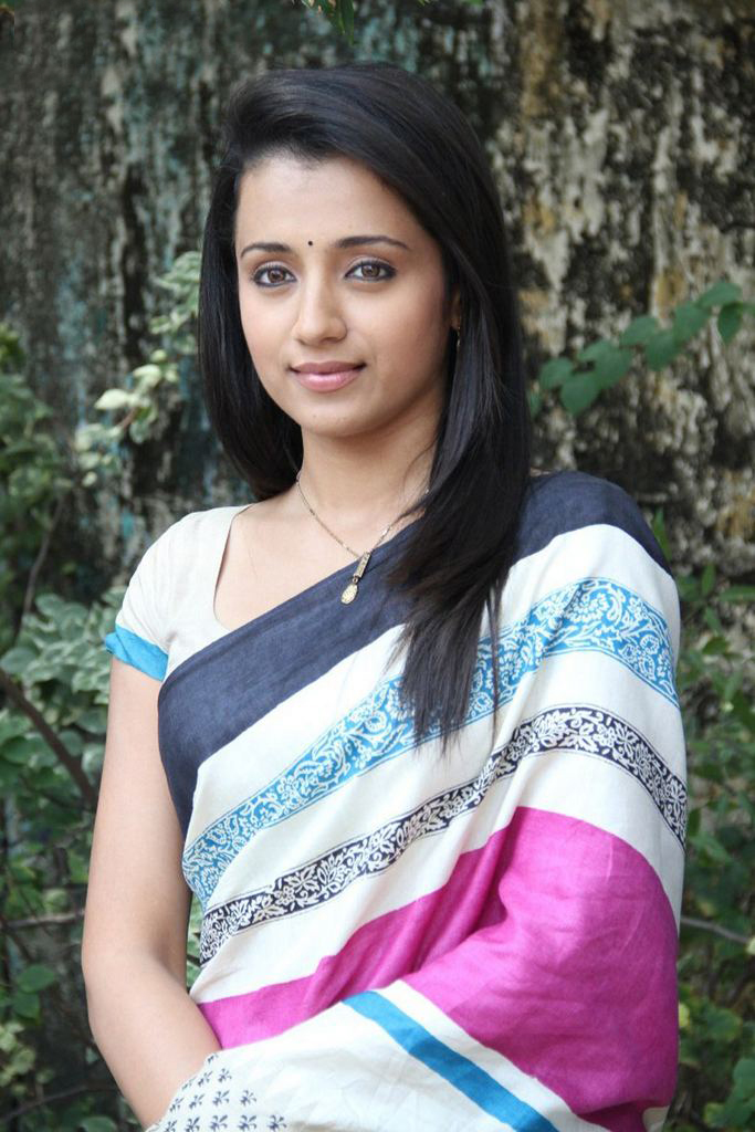 Actress Trisha In Saree-2287