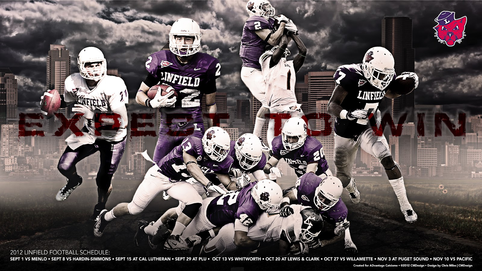 Advantage Catdome 2012 Linfield Football Wallpaper Is Here