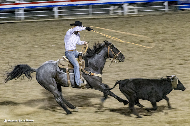Cody Nite Rodeo - Wyoming por El Guisante Verde Project