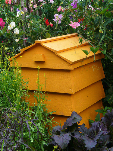 Tilly's Nest: Stackable Beehive Composter
