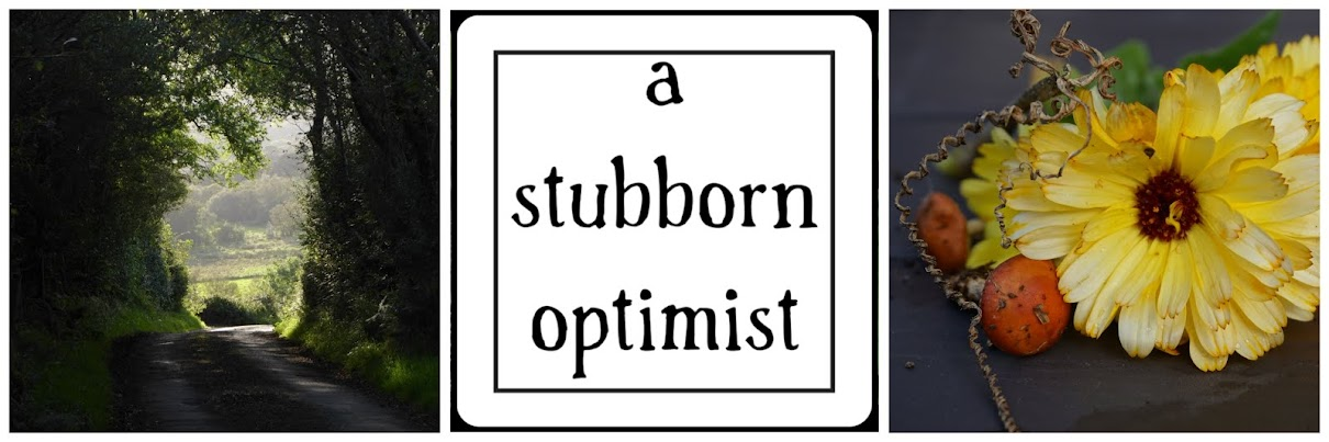 A Stubborn Optimist ~ An Ecotherapy blog