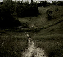 The Narrow Way - Shayani A. Turko