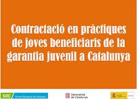 Contractació en pràctiques de joves beneficiaris de la garantia juvenil a Catalunya
