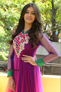 Actress Pooja Jhaveri Latest Stills in Purple Salwar Kameezt at Dwaraka Success Meet  0112.JPG