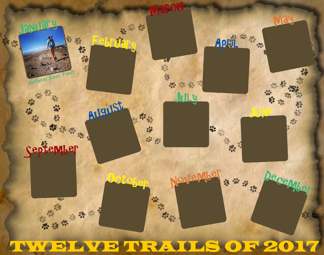 Twelve Trails of 2017 - January