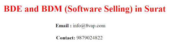 BDE and BDM (Software Selling) in Surat