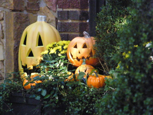 Three plug in jack-o-lanterns add to the allure of this small window box garden.