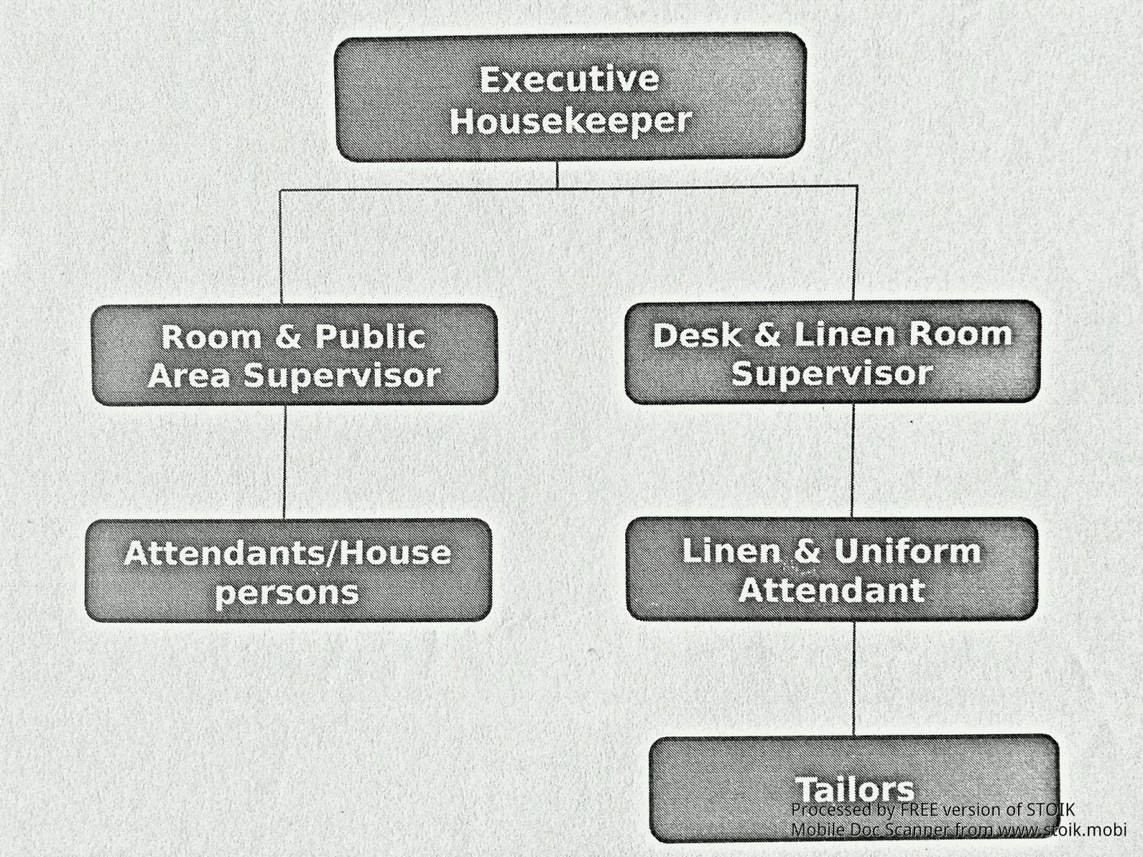 Organizational structure of   department also house keeping notes rh paramjamwalspot