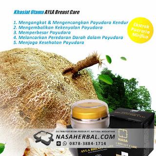 http://www.nasaherbal.com/2016/04/6-jenis-makanan-untuk-payudara-sehat-dan-kencang.html