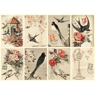 Kuşlar ve çiçekler