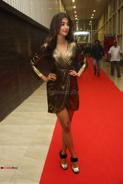 Pooja Hegde looks glamarous in deep neck sleevless short tight golden gown at Duvvada Jagannadham thank you meet function 003.JPG
