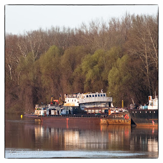 Hajók parkolnak a tiszai kikötőben